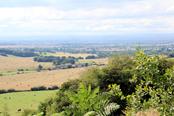 The view from Sutton Bank